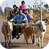 कृषि आधार का बढ़ता भार